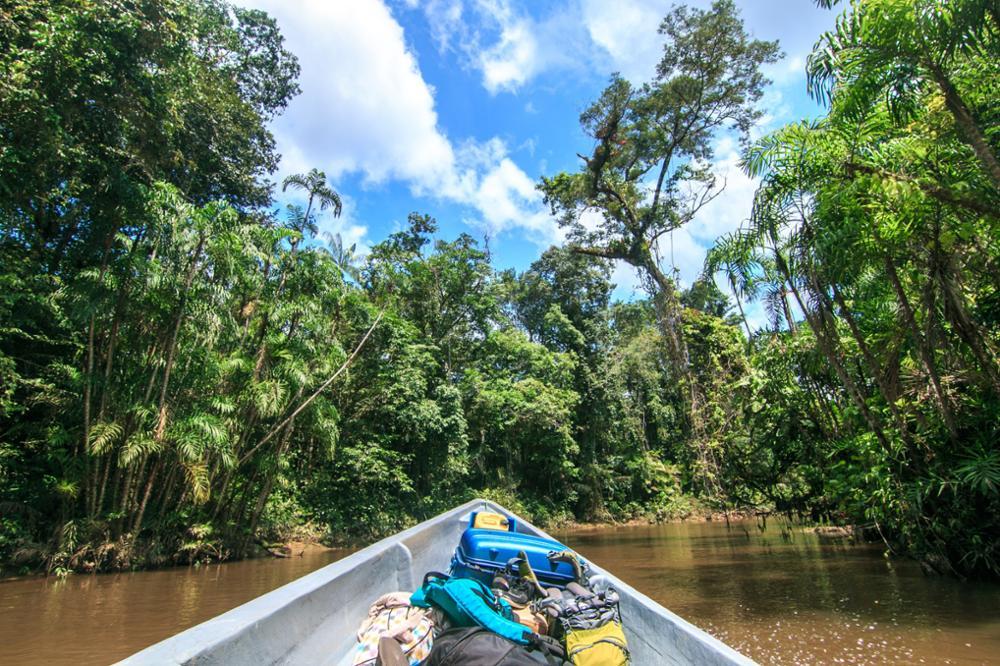Comment préparer un voyage en Amazonie au Brésil ?